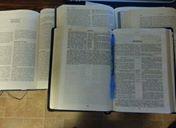 Hosea study